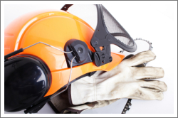 chainsaw safety gear
